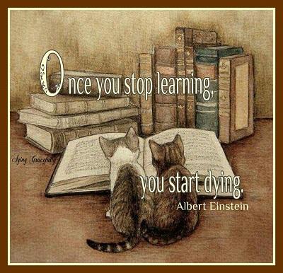 06-08-Einstein on Learning